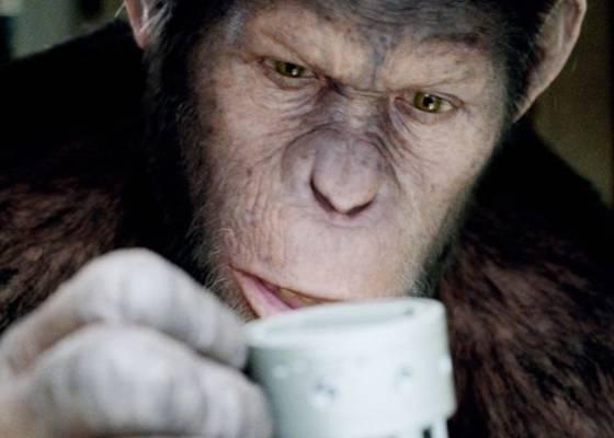 O macaco César de Planeta dos Macacos: A Origem